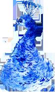 Harding and Company - Peacock